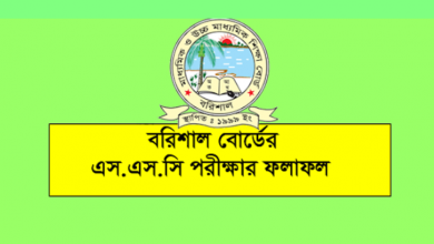 SSC Result 2021 Barisal