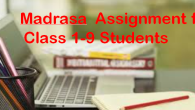 Madrasa Board Assignment for Class 1-9 Students