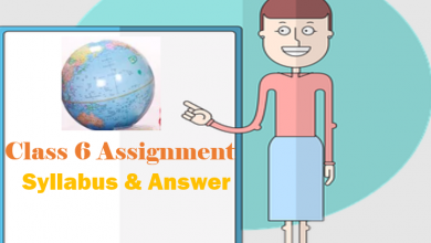Class 6 Assignment Syllabus & Answer