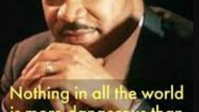 Martin Luther King Jr. Aotobiography, Inspiration quotes